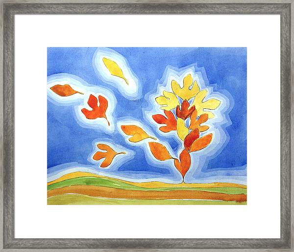 Sassafras Fall Framed Print