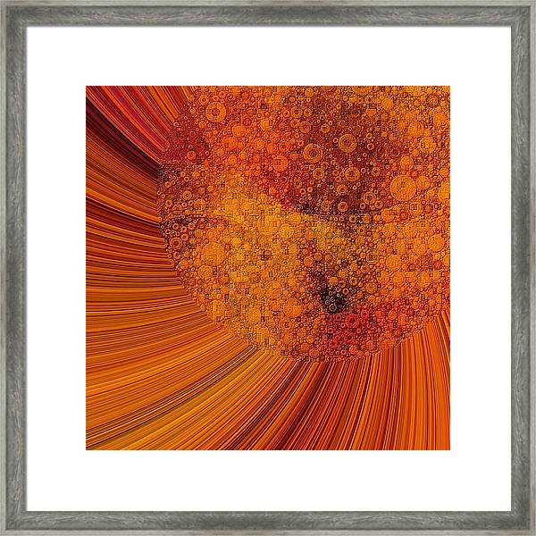 Saturated In Sun Rays Framed Print