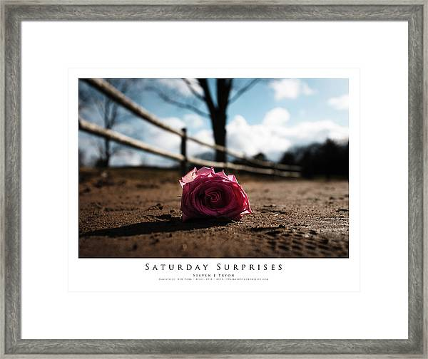 Saturday Surprises Framed Print by Steven Tryon