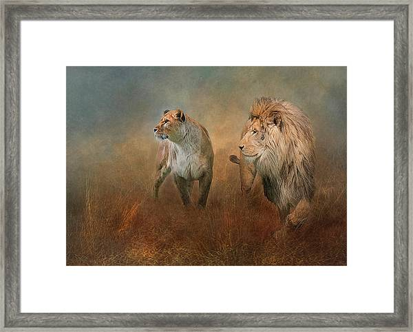 Savanna Lions Framed Print