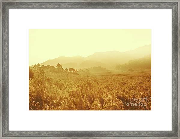 Savannah Esque Framed Print