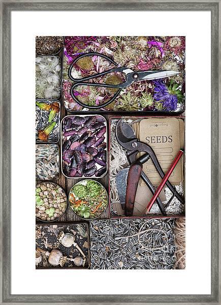 Saving Seeds Framed Print