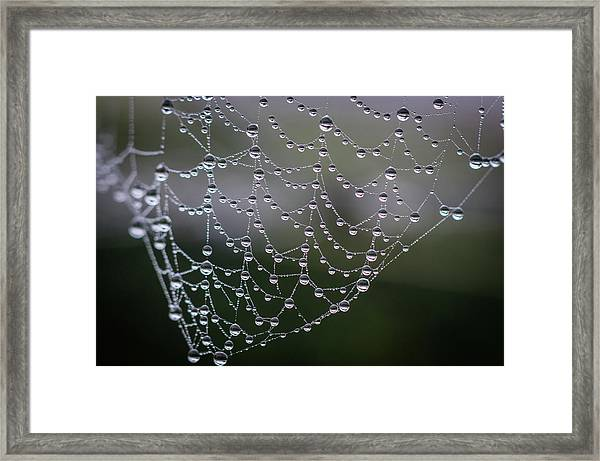 Say It With Pearls Framed Print