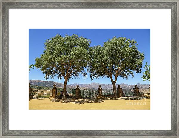 Scapes Of Our Lives #29 Framed Print