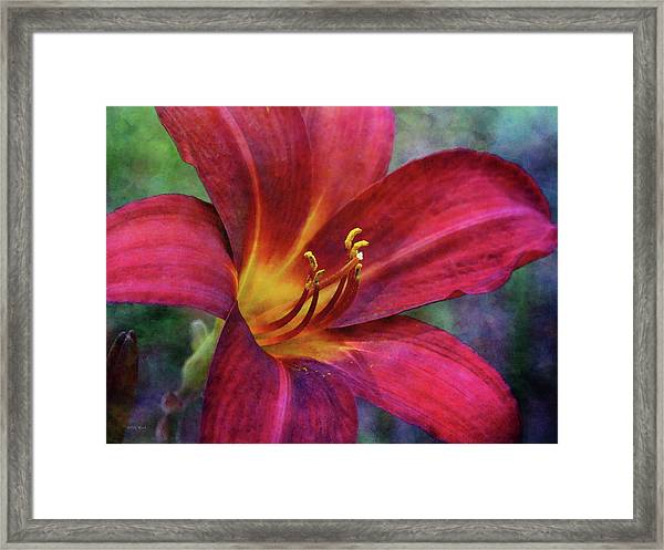 Scarlet And Gold Dust 3716 Idp_2 Framed Print