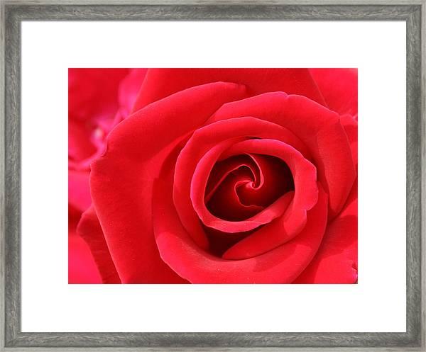 Scarlet Vortex Framed Print