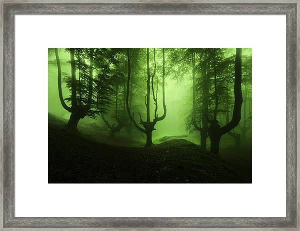 The Funeral Of Trees Framed Print