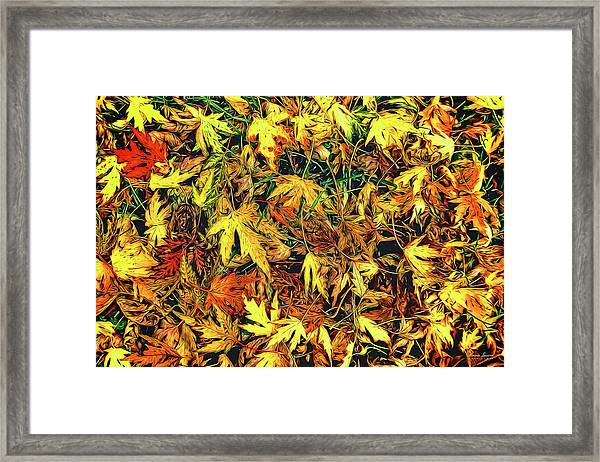 Scattered Autumn Leaves Framed Print