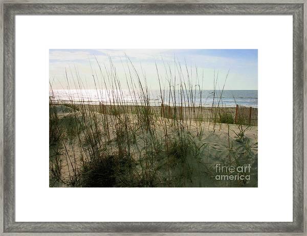 Scene From Hilton Head Island Framed Print