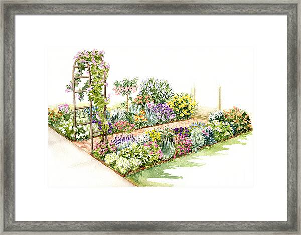 Scented Segue Framed Print