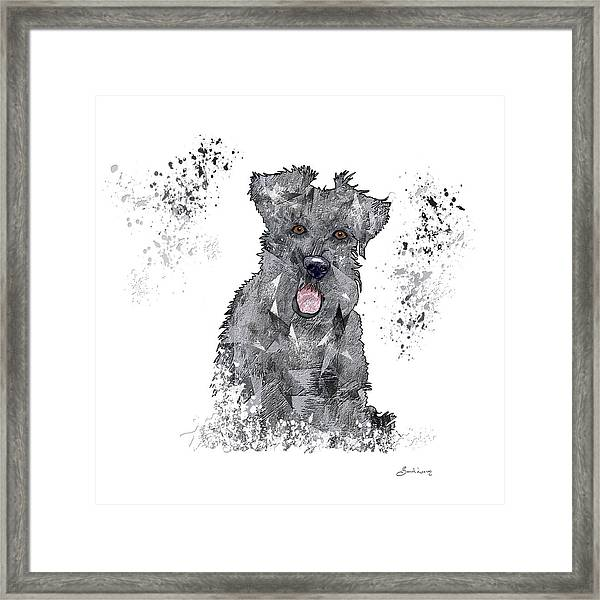 I Have Just Met You, And I Love You Framed Print