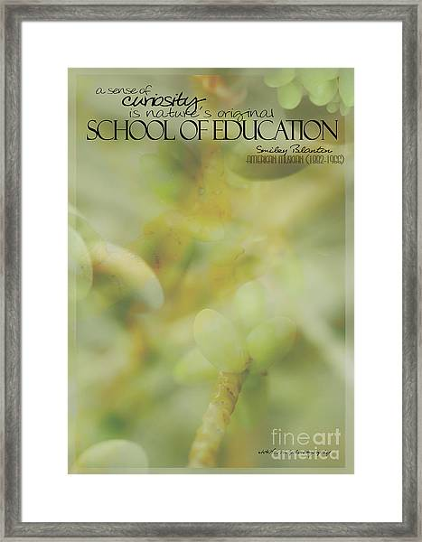 School Of Curiosity 01 Framed Print
