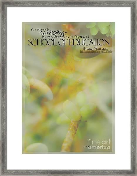 School Of Curiosity 03 Framed Print