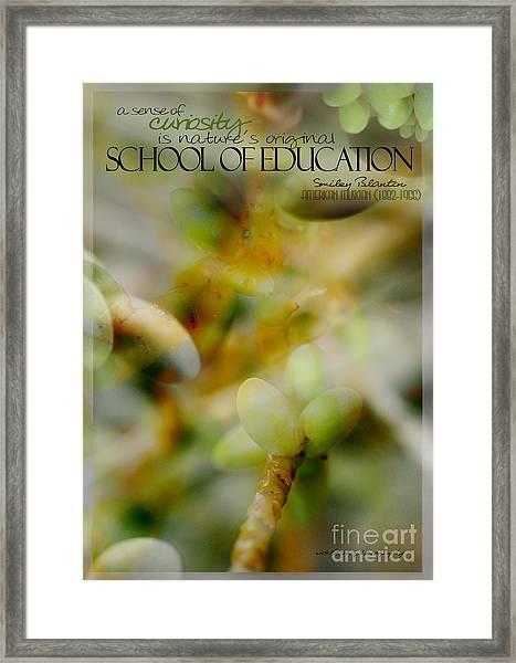 School Of Curiosity 04 Framed Print