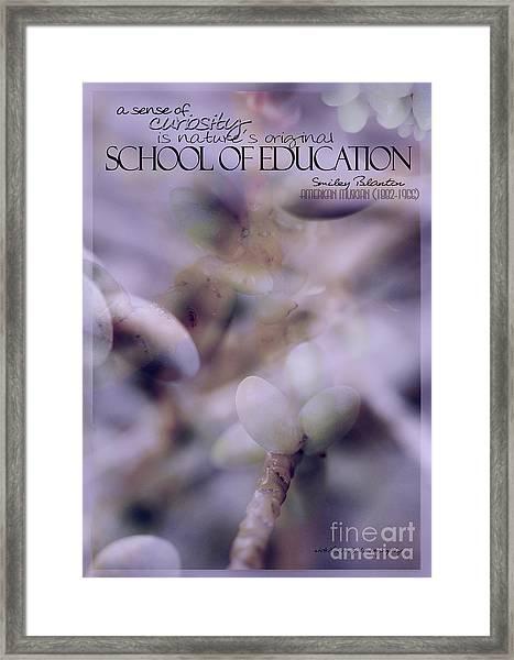 School Of Curiosity 07 Framed Print