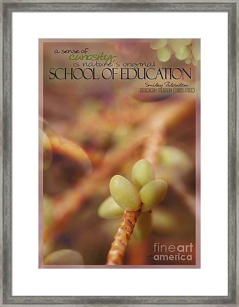 School Of Curiosity 08 Framed Print