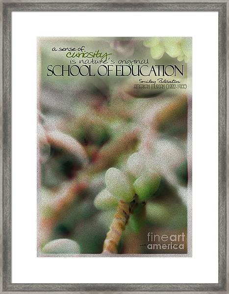 School Of Curiosity 09 Framed Print