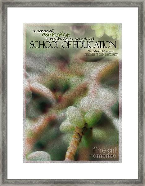 School Of Curiosity 11 Framed Print