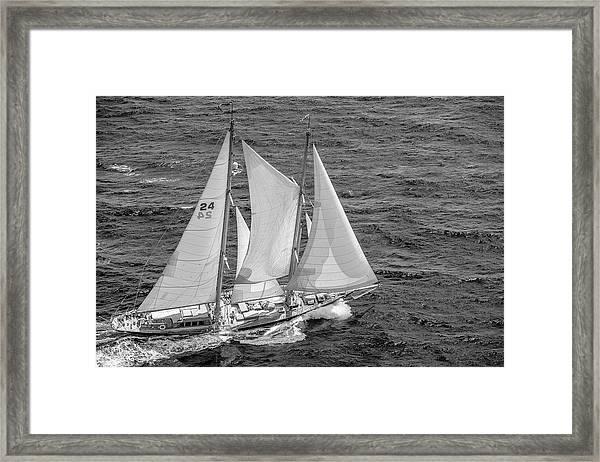 Schooner Framed Print