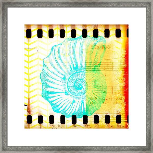 Sea Fog Nautilus Framed Print