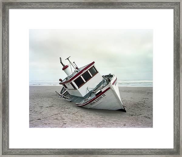 Sea Lion II - Last Day On The Beach Framed Print