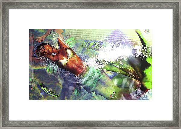 Sea Lioness Framed Print
