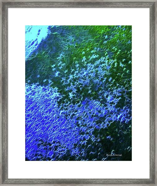 Sea Of Blue Framed Print