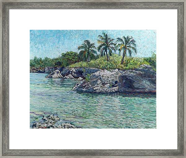 Sea, Rocks And Coconuts Framed Print