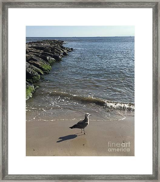 Sea Shadow Framed Print