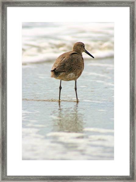 Sea Shore Stroller Framed Print