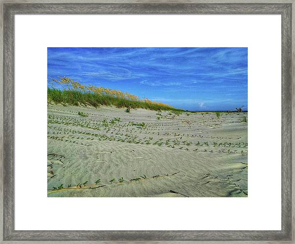 Sea Swept Framed Print