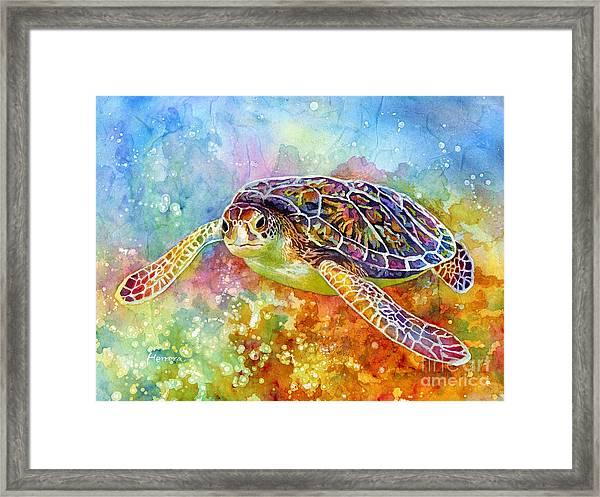 Sea Turtle 3 Framed Print