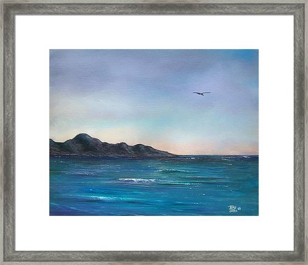 Seagull Seascape Framed Print