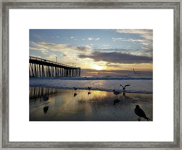 Seagulls And Salty Air Framed Print