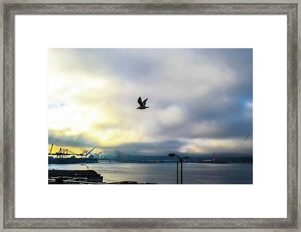 Seahawkin Framed Print