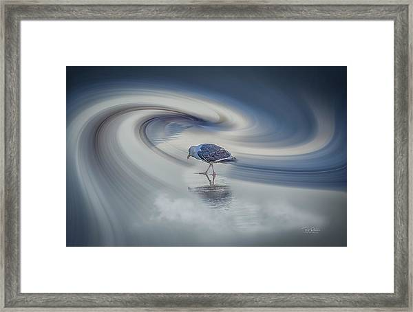 Searcher Framed Print