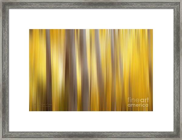 Seasoned Framed Print
