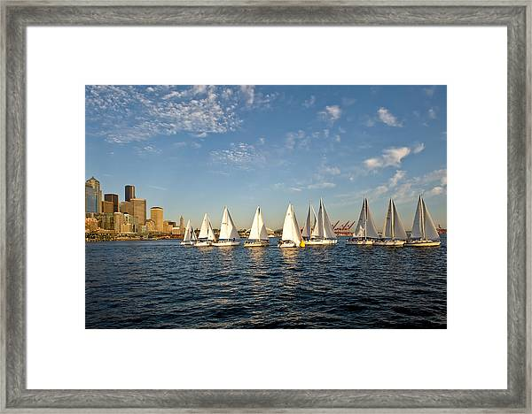 Seattle Sailboat Race Framed Print by Tom Dowd