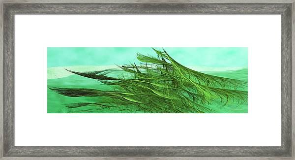 Seaweed Moves Framed Print