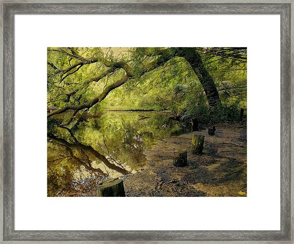 Secluded Sanctuary Framed Print