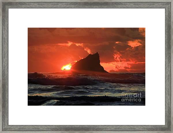 Second Beach Shark Framed Print
