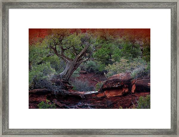 Sedona #1 Framed Print