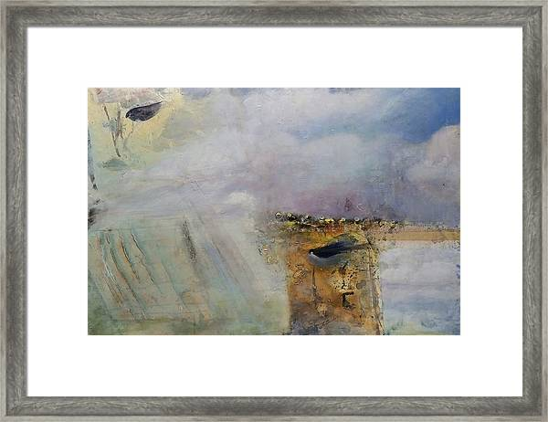 See Birds  Framed Print