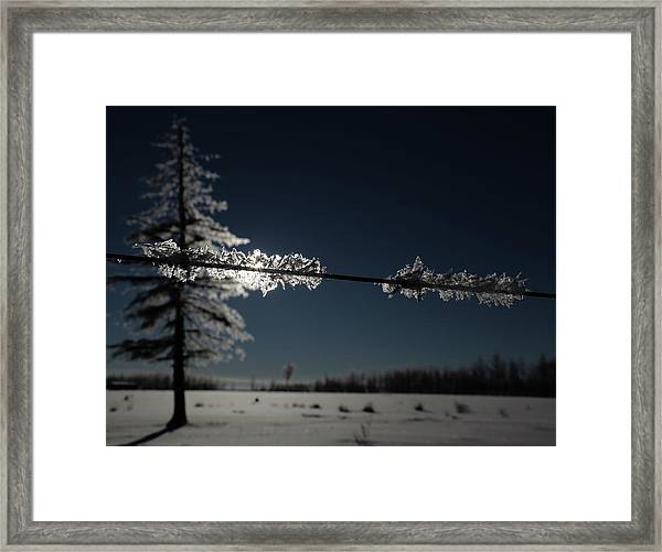 See The Land Framed Print