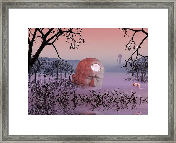 Seeking The Dying Light Of Wisdom Framed Print