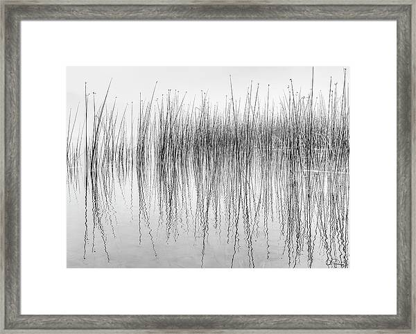 Framed Print featuring the photograph Seismograph by Dee Browning
