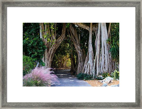 Selby Secret Garden 2 Framed Print