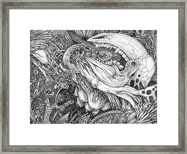 Self Searching 6 Framed Print by Joe MacGown