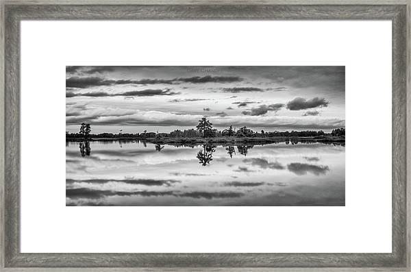 Seney Framed Print