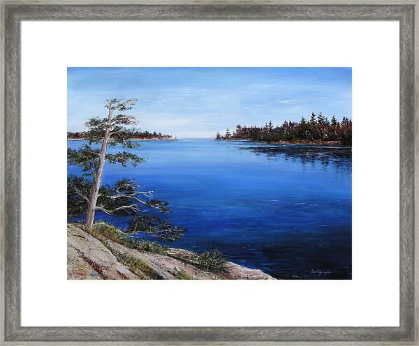 Framed Print featuring the painting Sentinel by Jan Byington